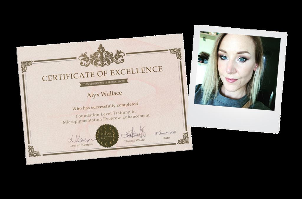 Alyx elite colours eyebrow enhancement training micropigmentation