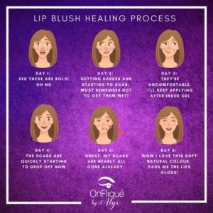 Lip Blush Healing Process 👄  Comment if you went through these exact emotions? 🤣 . . . #lipblush #spmu #lipblushtattoo #spmuartist #lipblushing #lipblushtraining #spmulips #lipblushpigments #spmutraining #spmua #lipspmu #blushlips #cosmetictattooartist #nanoblading #permanentlips #liptattoo #pmulips #lipliner #microbladingartist #pmu #pmuartist #browsonfleek #spmubrows #combobrows #browtattoo #microbladebrows #beautifulbrows #browshape #browspecialist #hairstrokebrows